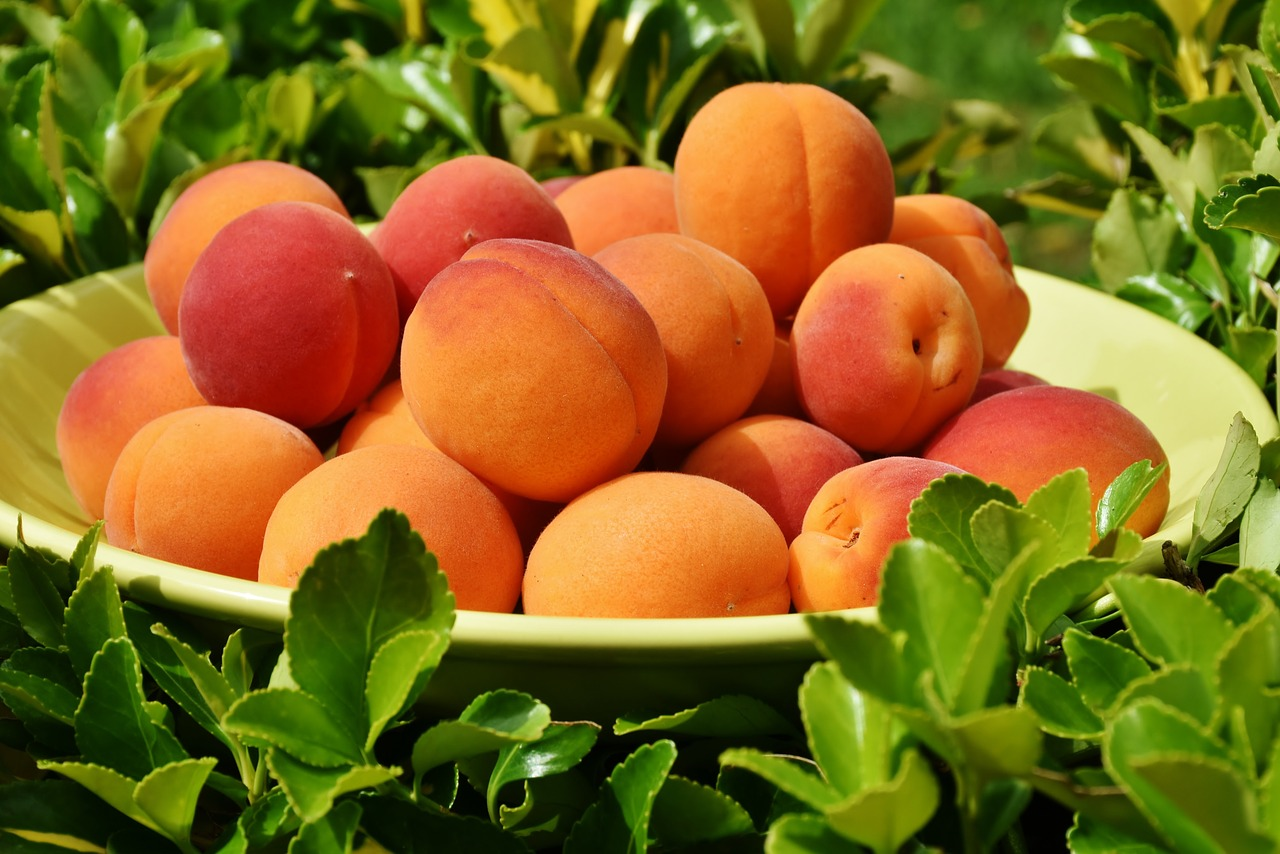 are Apricots safe?