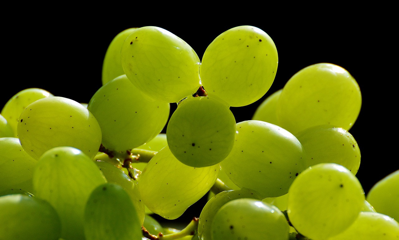 are grapes healthy?