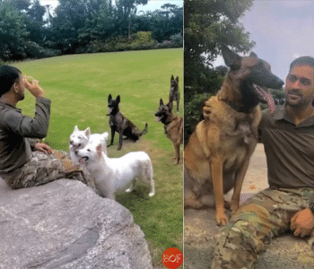 MS Dhoni with dogs